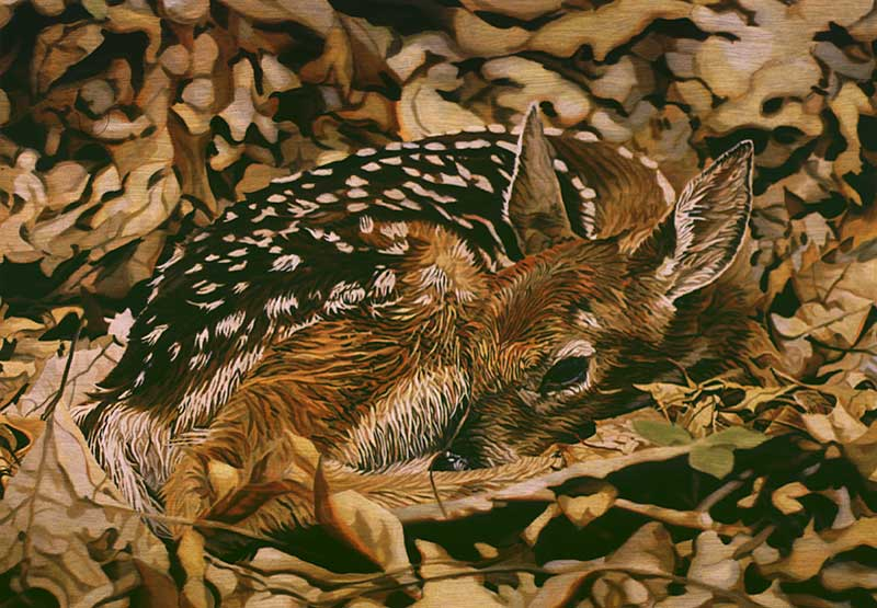 Bambi-Scene-4-800