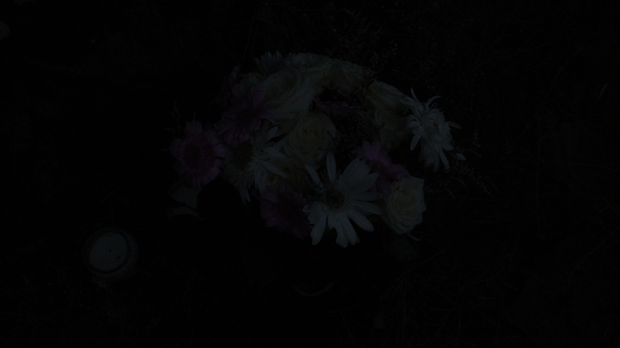 flowers for shannon archer