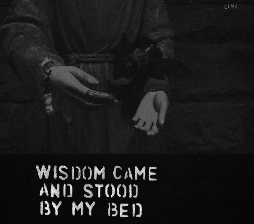 Wisdom came and stood by my bed.