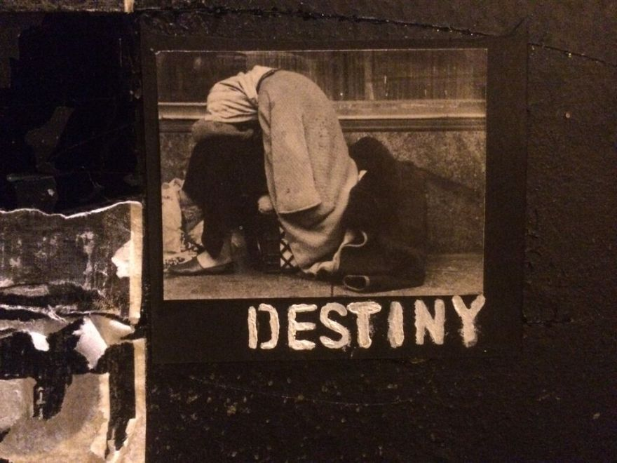 Destiny, 2016