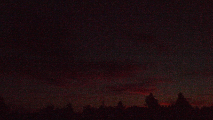 colored faint streaks of gold in night's tapestry